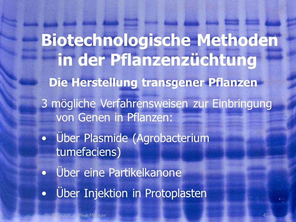 Die Herstellung transgener Pflanzen