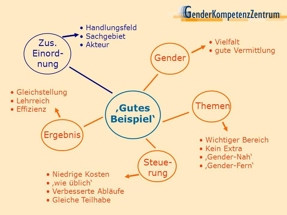 'Gutes Beispiel' Zus. Einord-nung Gender Themen Ergebnis Steue-rung