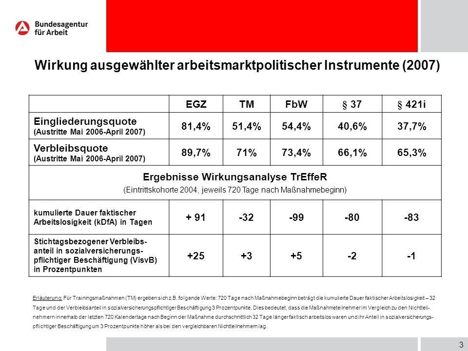 Wirkung ausgewählter arbeitsmarktpolitischer Instrumente (2007)