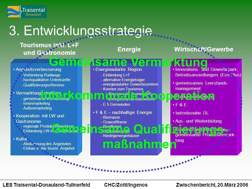 3. Entwicklungsstrategie