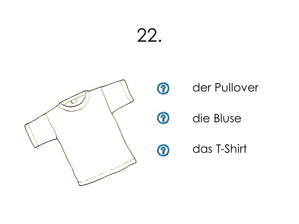 22. der Pullover die Bluse das T-Shirt 