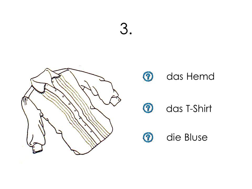 3. das Hemd das T-Shirt die Bluse 