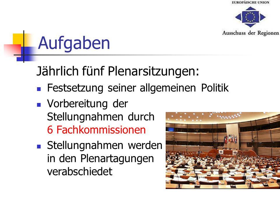 Aufgaben Jährlich fünf Plenarsitzungen: