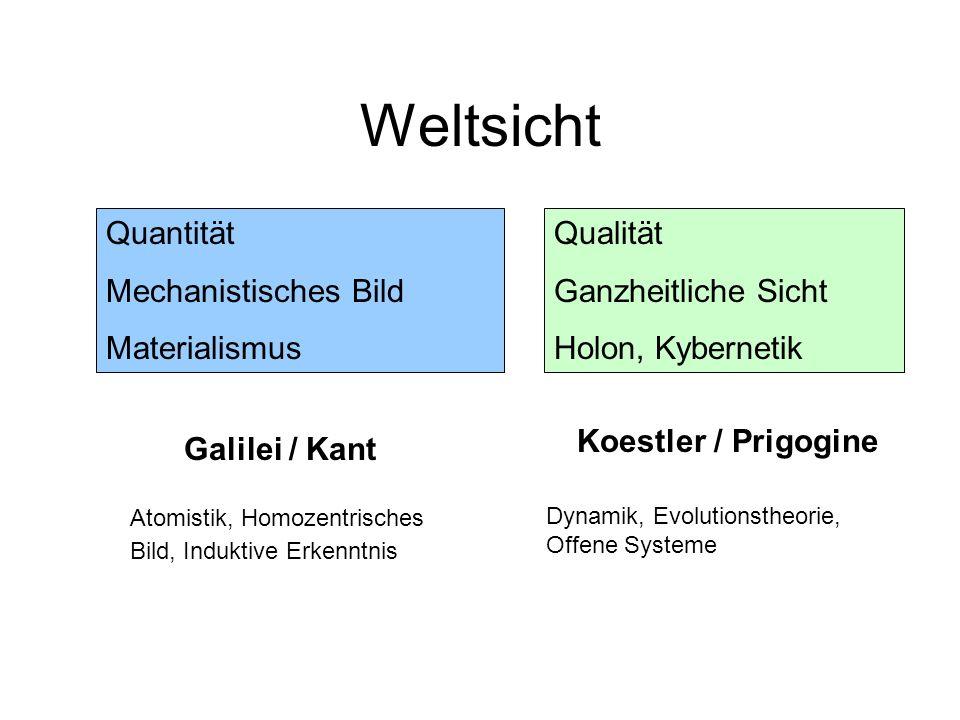 Weltsicht Quantität Mechanistisches Bild Materialismus Qualität