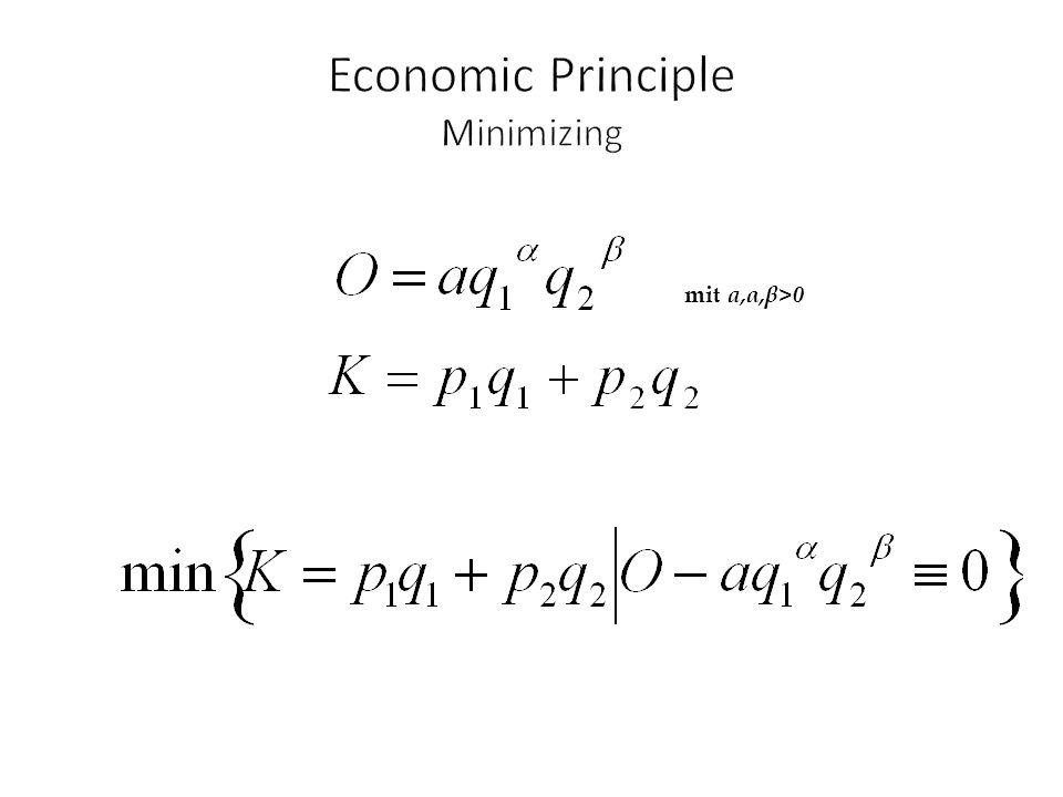 Economic Principle Minimizing