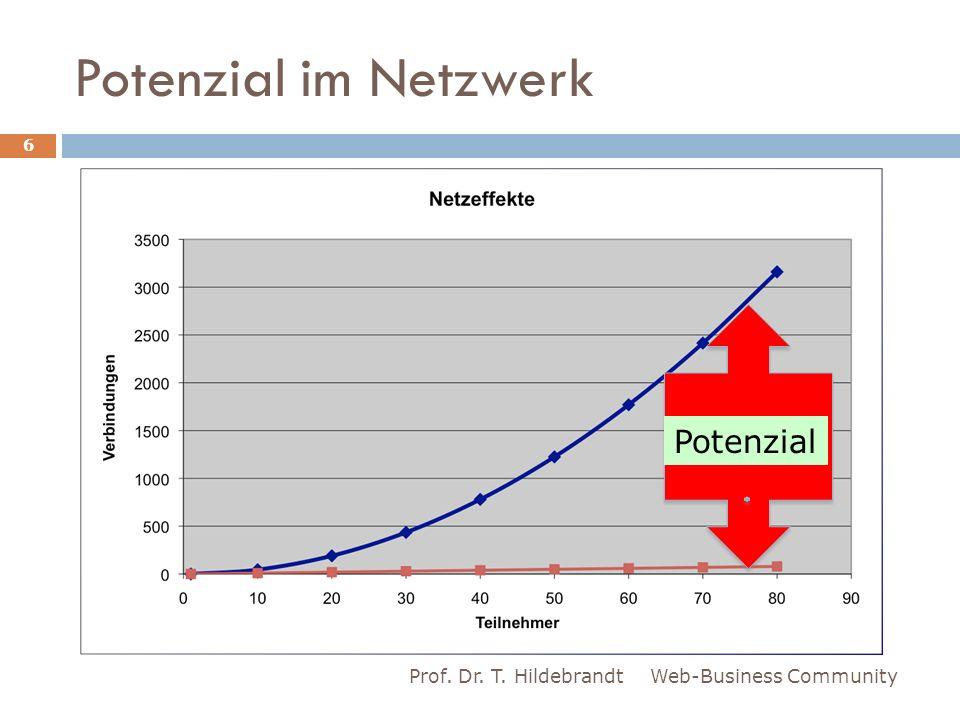 Potenzial im Netzwerk Potenzial Prof. Dr. T. Hildebrandt