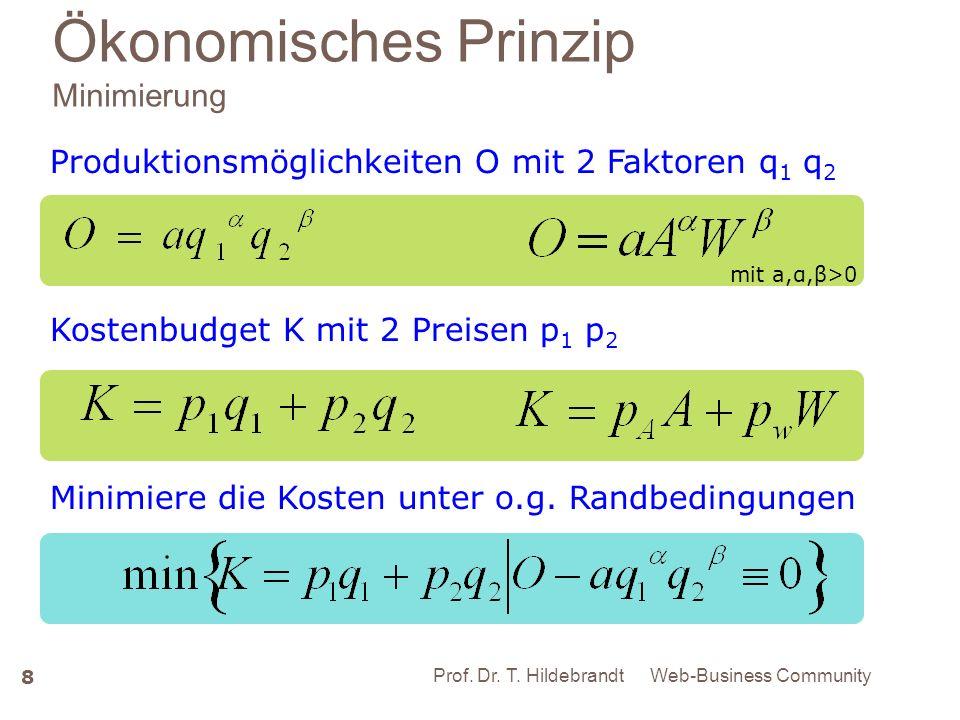 Ökonomisches Prinzip Minimierung