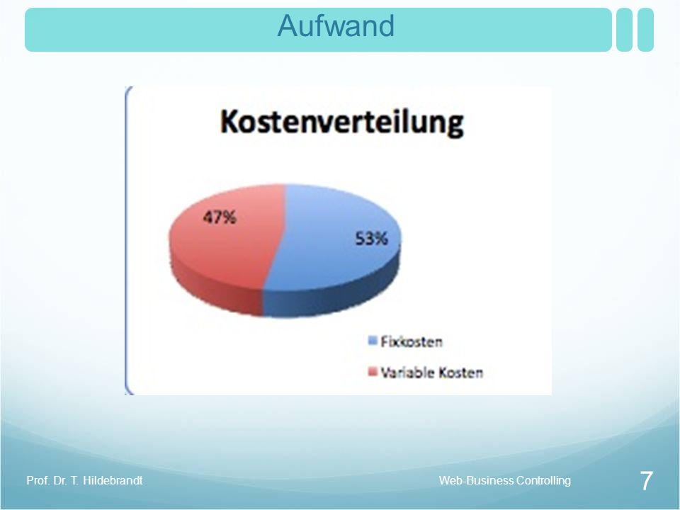 Aufwand Prof. Dr. T. Hildebrandt Web-Business Controlling
