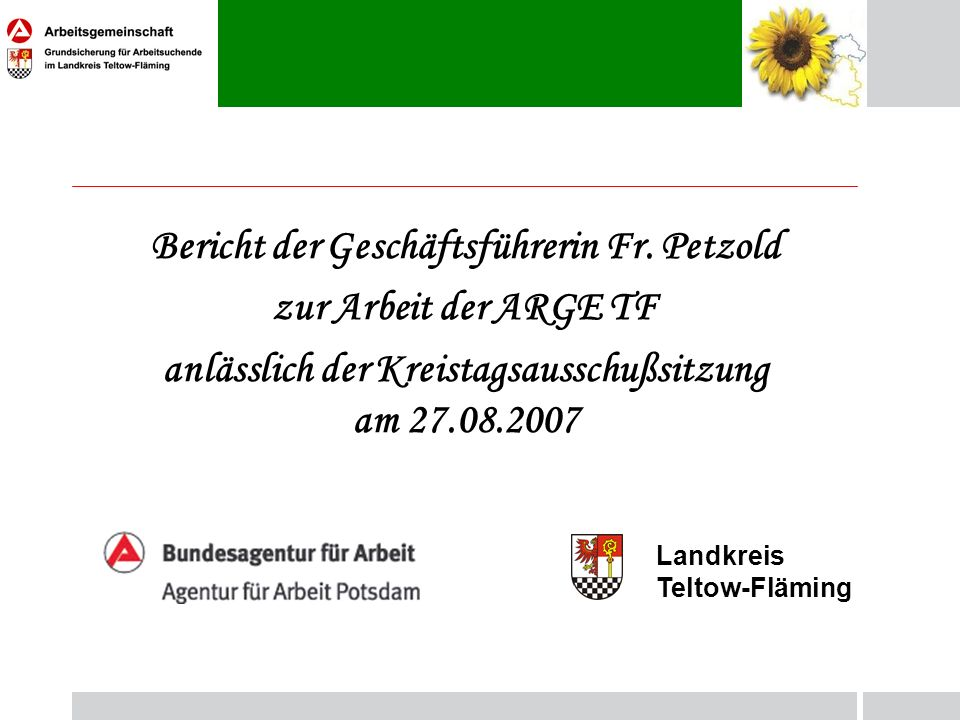 Bericht der Geschäftsführerin Fr. Petzold zur Arbeit der ARGE TF