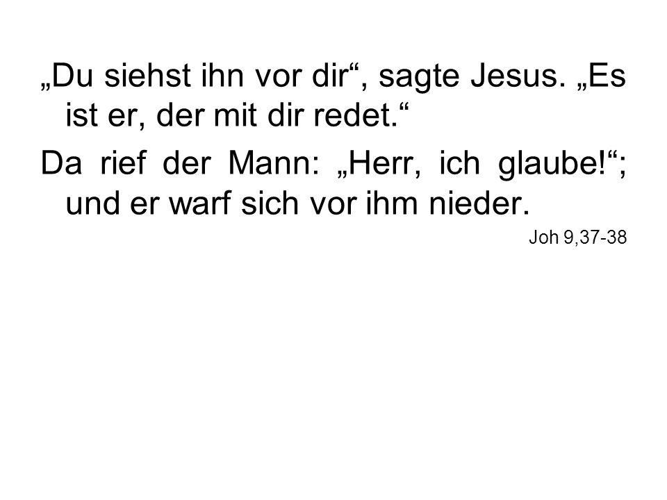 """""""Du siehst ihn vor dir , sagte Jesus. """"Es ist er, der mit dir redet."""