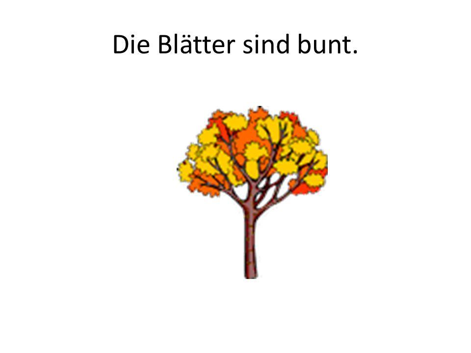 Die Blätter sind bunt.