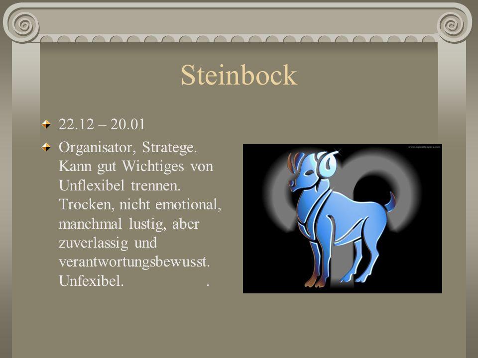 Steinbock 22.12 – 20.01.