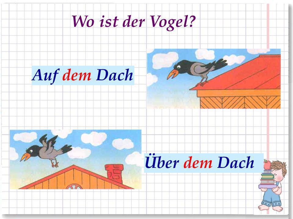 Wo ist der Vogel Auf dem Dach На крыше Über dem Dach Над крышей