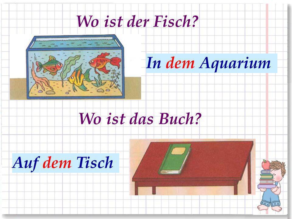 Wo ist der Fisch In dem Aquarium В аквариуме Wo ist das Buch На столе Auf dem Tisch