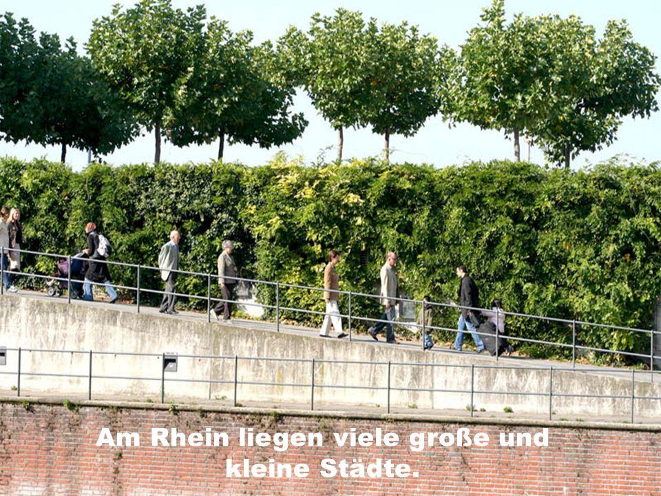 Am Rhein liegen viele große und kleine Städte.