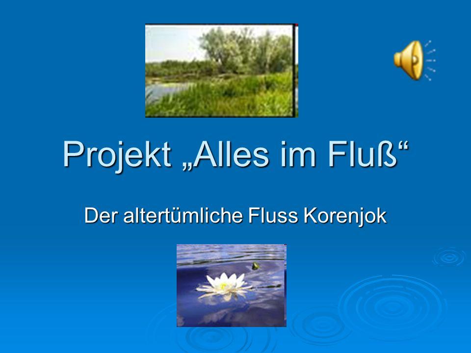 """Projekt """"Alles im Fluß"""