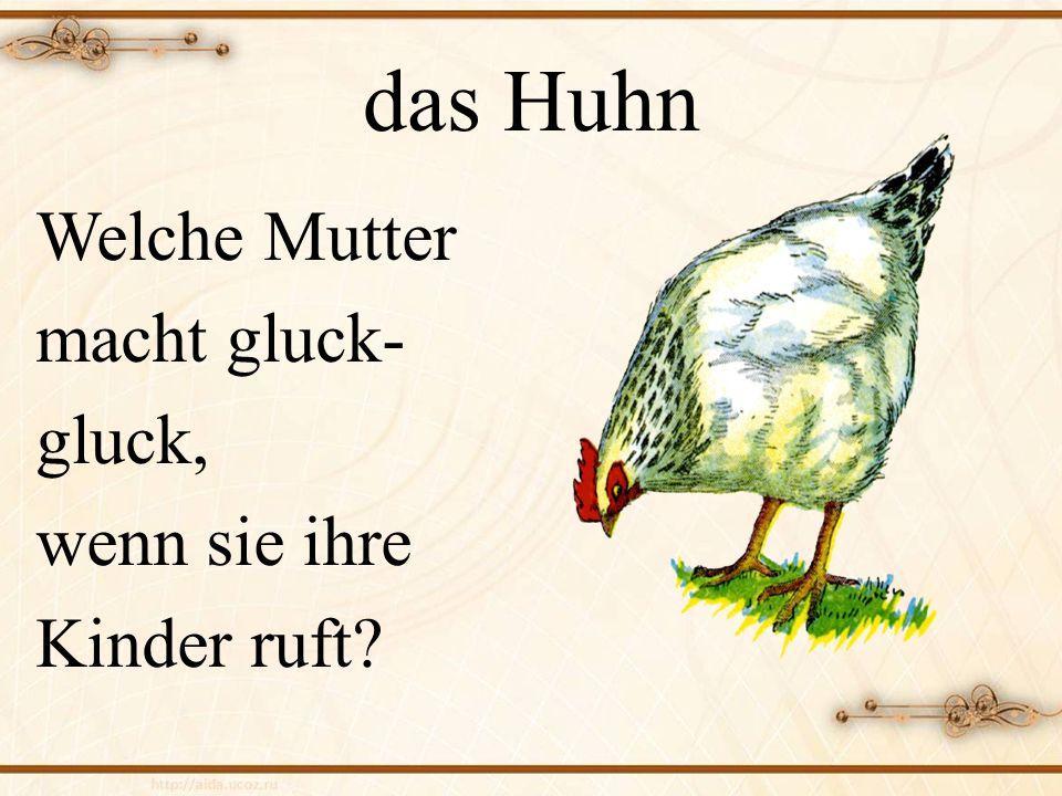 das Huhn Welche Mutter macht gluck- gluck, wenn sie ihre Kinder ruft