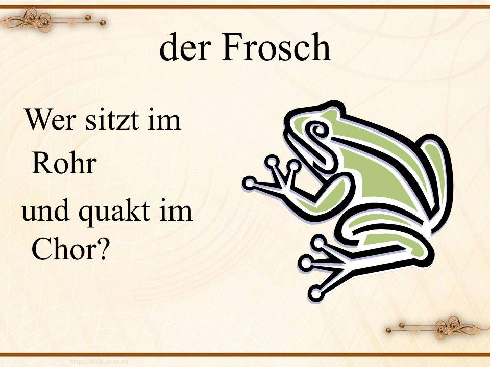 der Frosch Wer sitzt im Rohr und quakt im Chor
