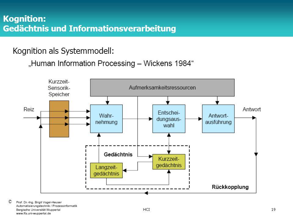 Kognition: Gedächtnis und Informationsverarbeitung