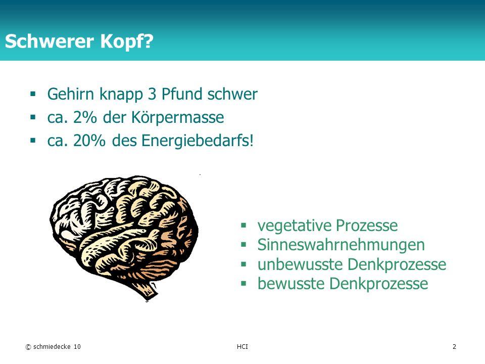 Gehirn knapp 3 Pfund schwer ca. 2% der Körpermasse