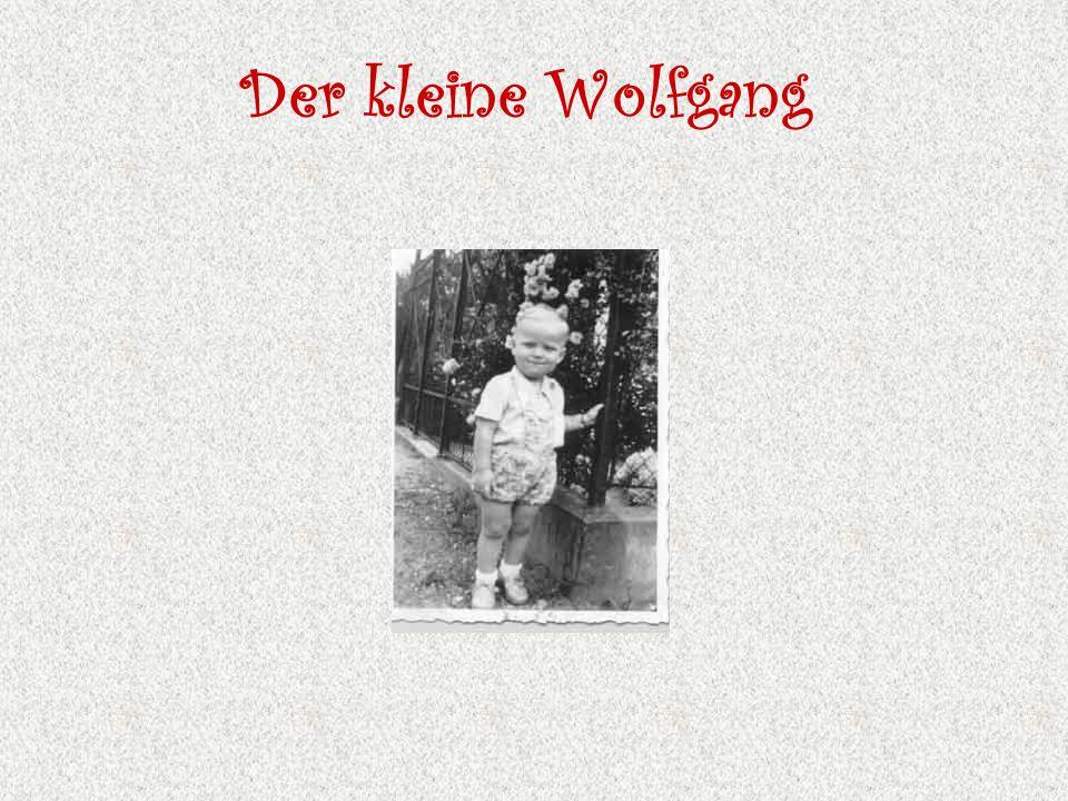 Der kleine Wolfgang