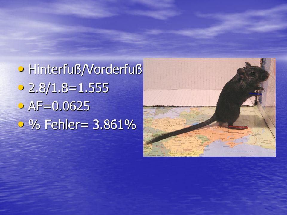 Hinterfuß/Vorderfuß 2.8/1.8=1.555 AF=0.0625 % Fehler= 3.861%