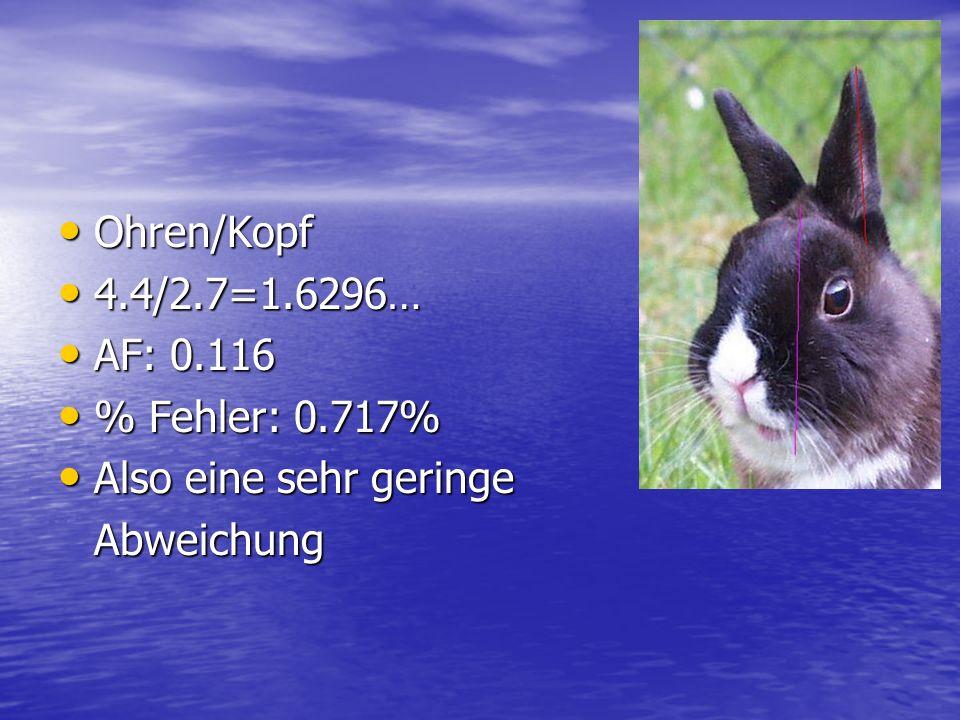 Ohren/Kopf 4.4/2.7=1.6296… AF: 0.116 % Fehler: 0.717% Also eine sehr geringe Abweichung