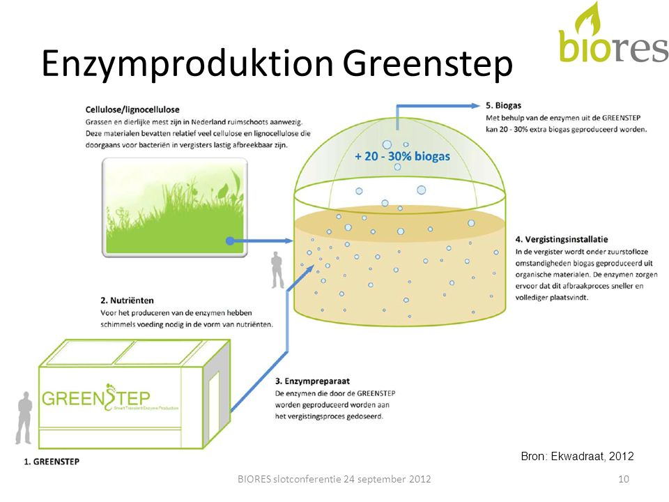 Enzymproduktion Greenstep