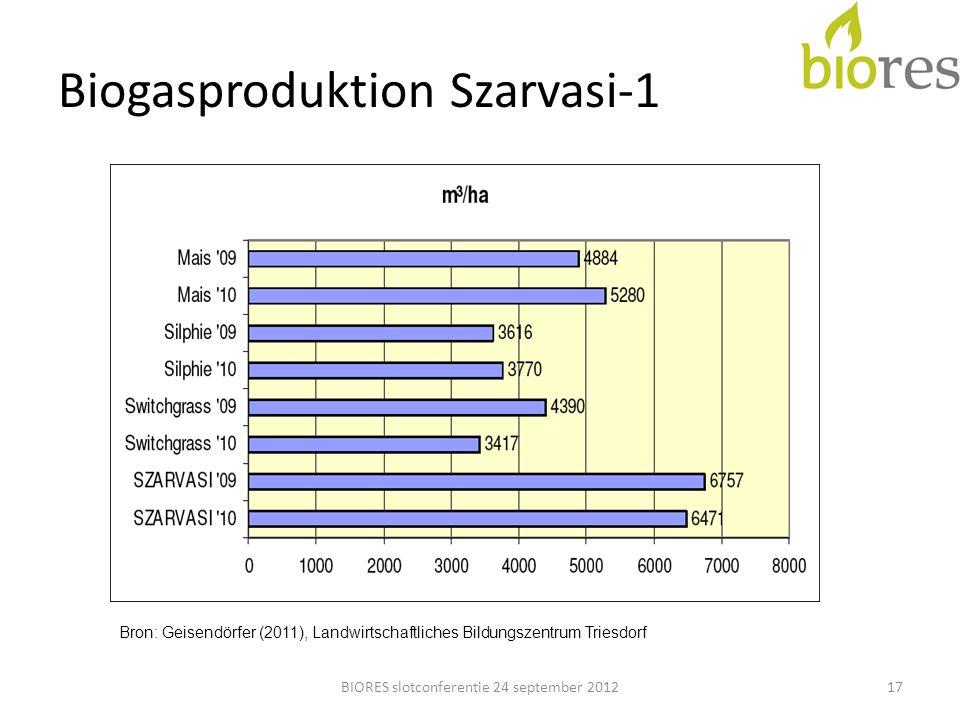 Biogasproduktion Szarvasi-1