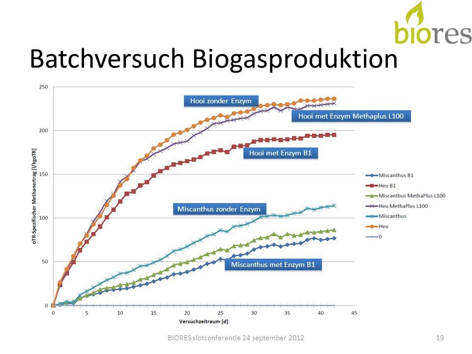 Batchversuch Biogasproduktion