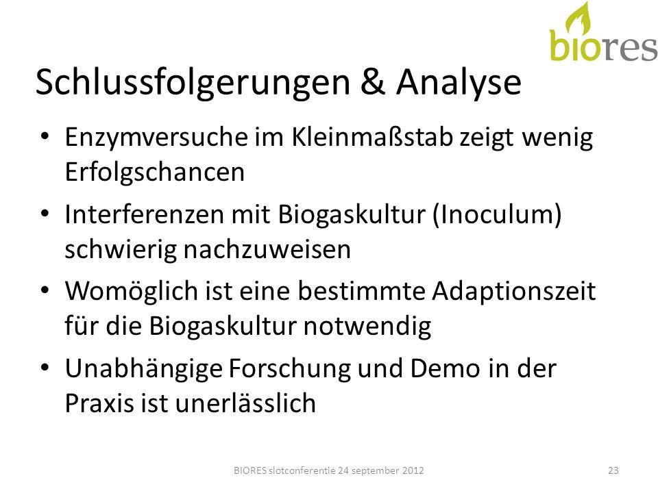 Schlussfolgerungen & Analyse