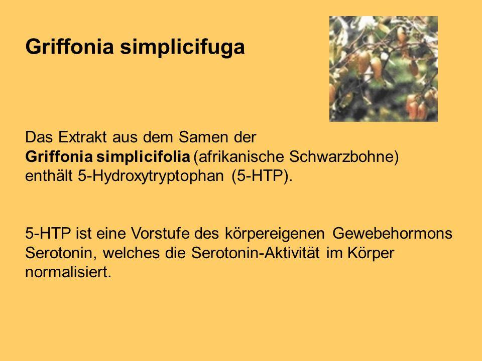 Griffonia simplicifuga