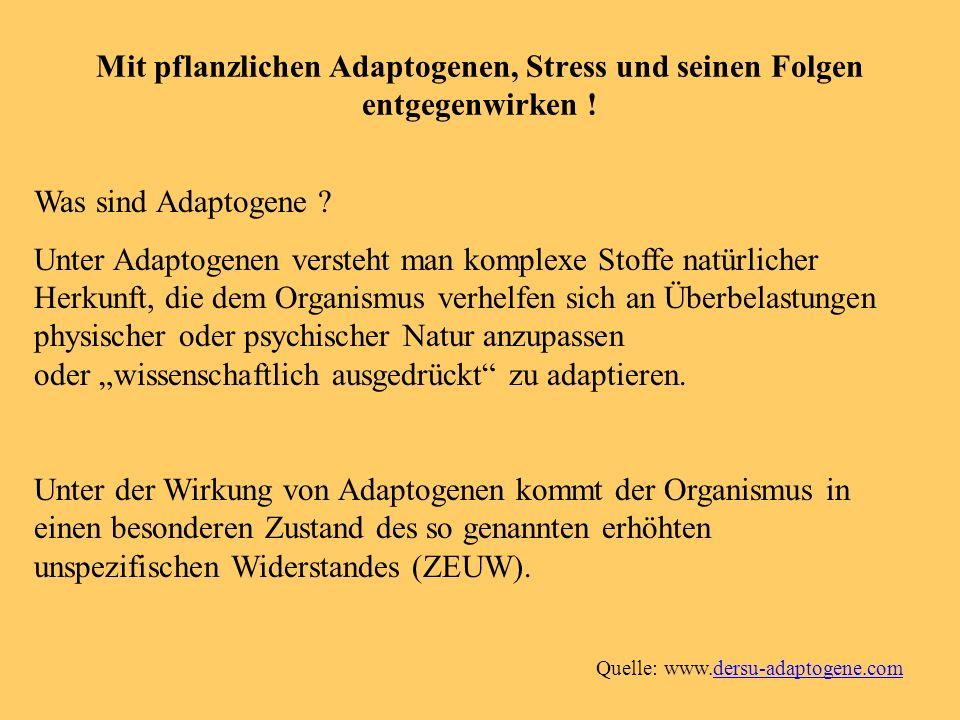 Mit pflanzlichen Adaptogenen, Stress und seinen Folgen entgegenwirken !