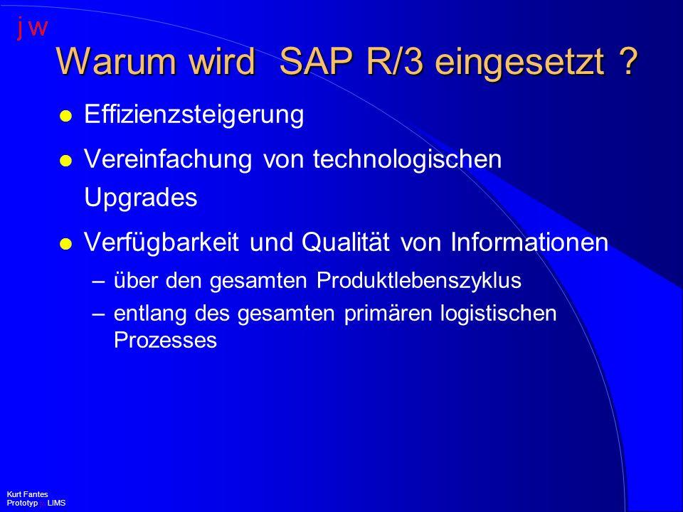 Warum wird SAP R/3 eingesetzt