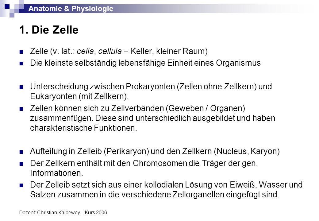 1. Die Zelle Zelle (v. lat.: cella, cellula = Keller, kleiner Raum)