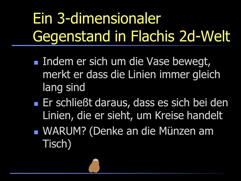 Ein 3-dimensionaler Gegenstand in Flachis 2d-Welt