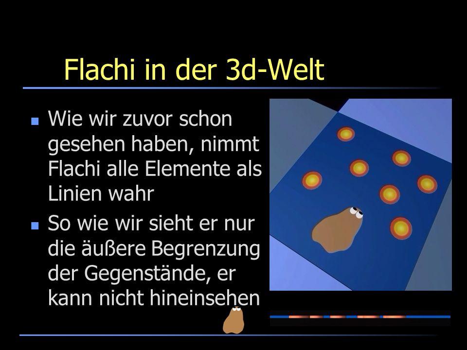 Flachi in der 3d-WeltWie wir zuvor schon gesehen haben, nimmt Flachi alle Elemente als Linien wahr.