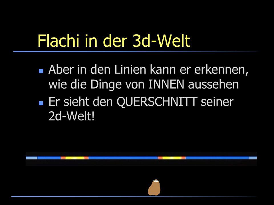 Flachi in der 3d-WeltAber in den Linien kann er erkennen, wie die Dinge von INNEN aussehen.