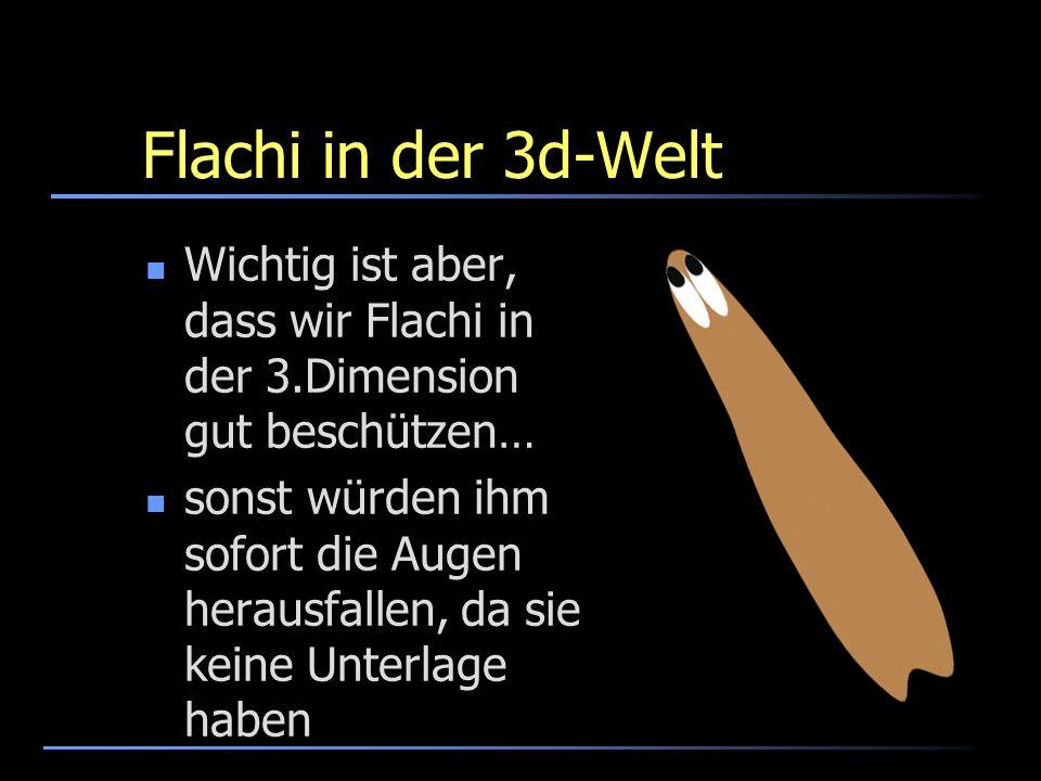 Flachi in der 3d-Welt Wichtig ist aber, dass wir Flachi in der 3.Dimension gut beschützen…