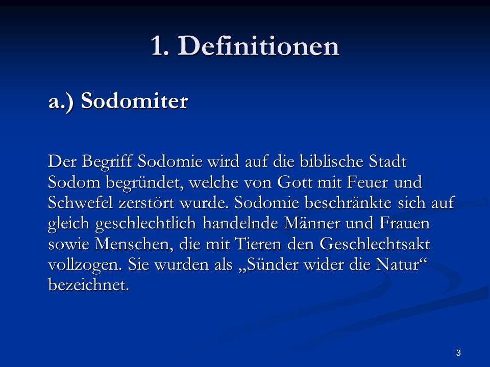 1. Definitionen a.) Sodomiter