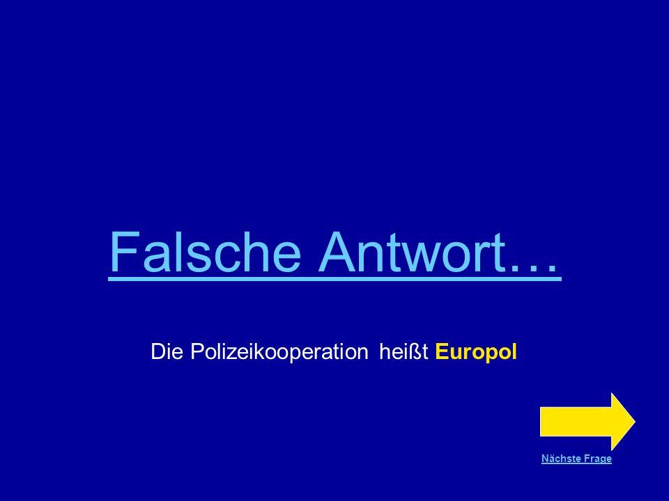 Die Polizeikooperation heißt Europol