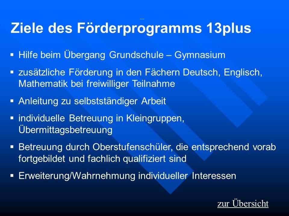 Ziele des Förderprogramms 13plus
