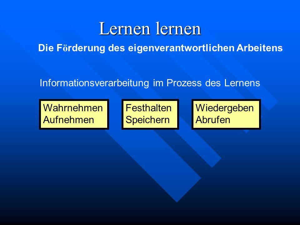 Informationsverarbeitung im Prozess des Lernens