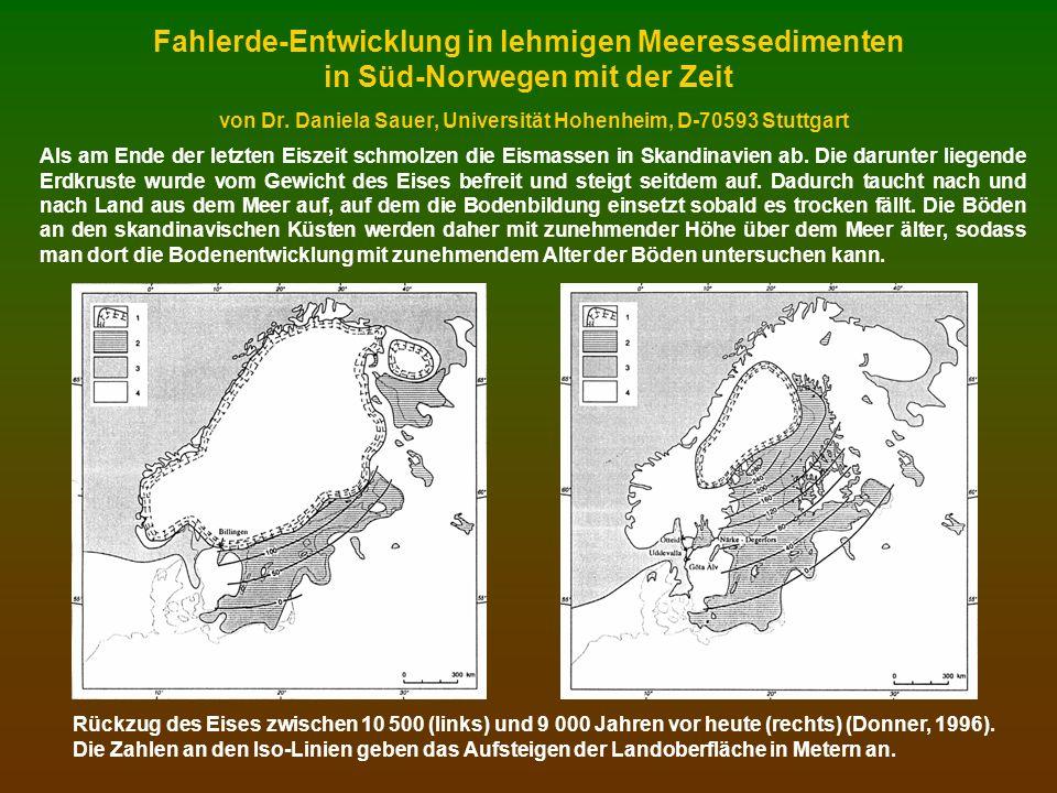 Fahlerde-Entwicklung in lehmigen Meeressedimenten in Süd-Norwegen mit der Zeit von Dr. Daniela Sauer, Universität Hohenheim, D-70593 Stuttgart