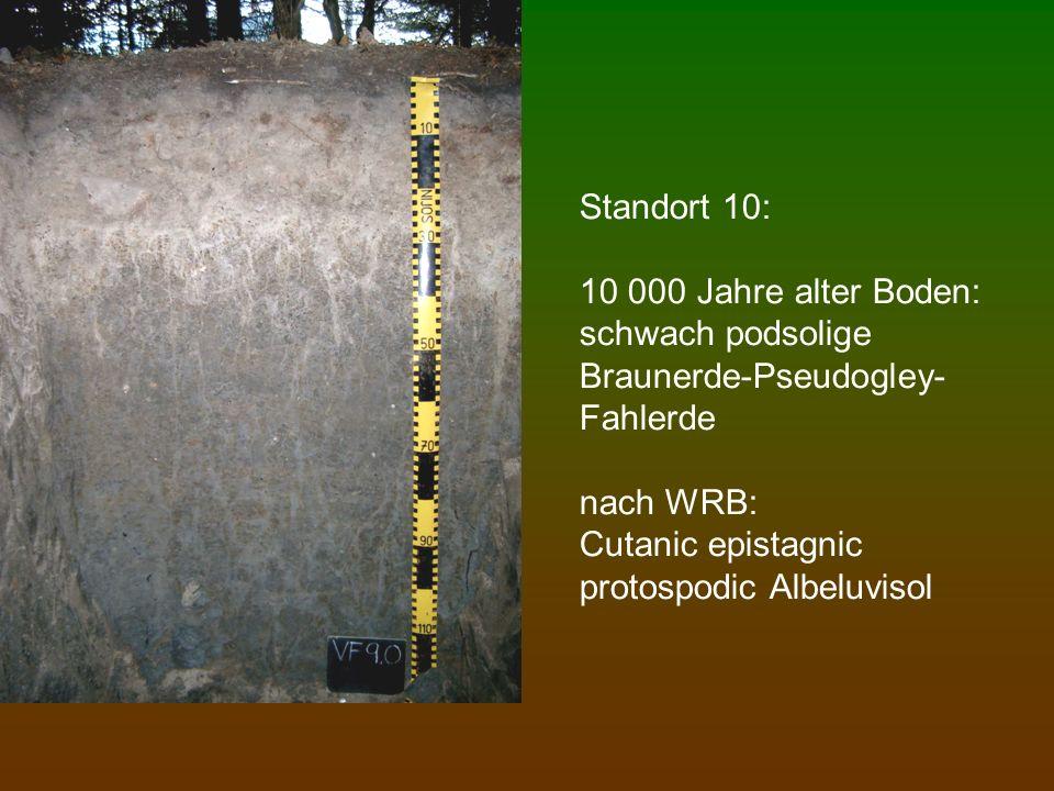 Standort 10: 10 000 Jahre alter Boden: schwach podsolige Braunerde-Pseudogley-Fahlerde nach WRB: Cutanic epistagnic protospodic Albeluvisol