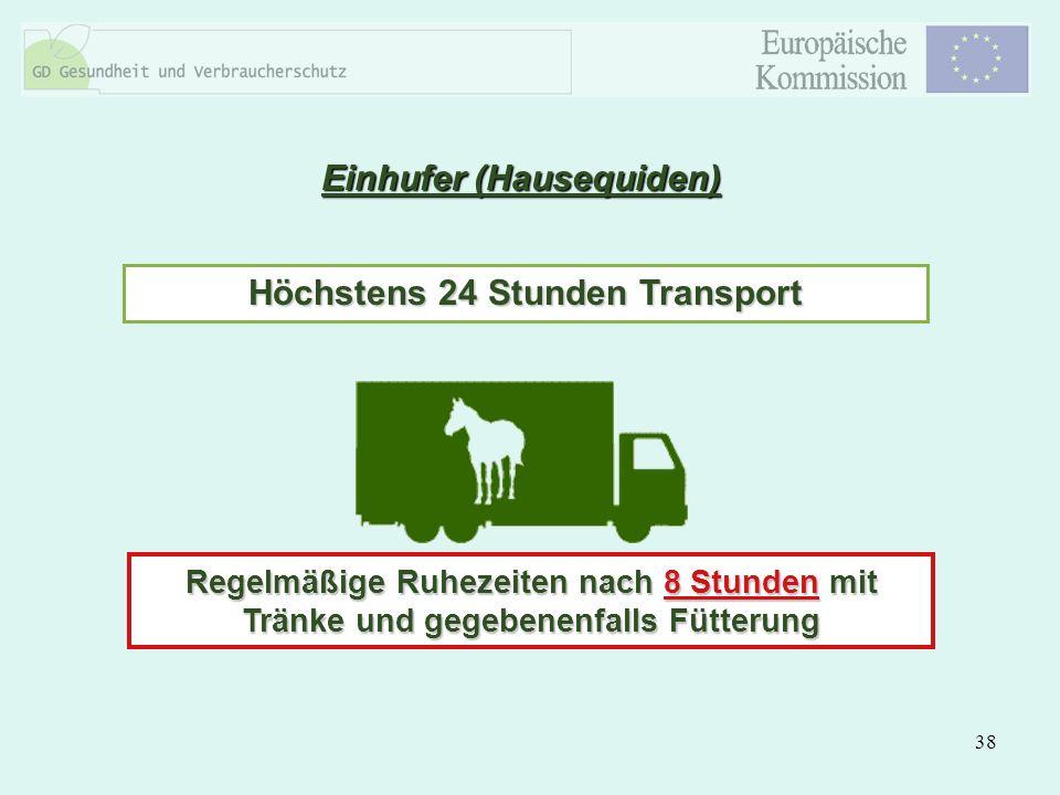 Einhufer (Hausequiden) Höchstens 24 Stunden Transport