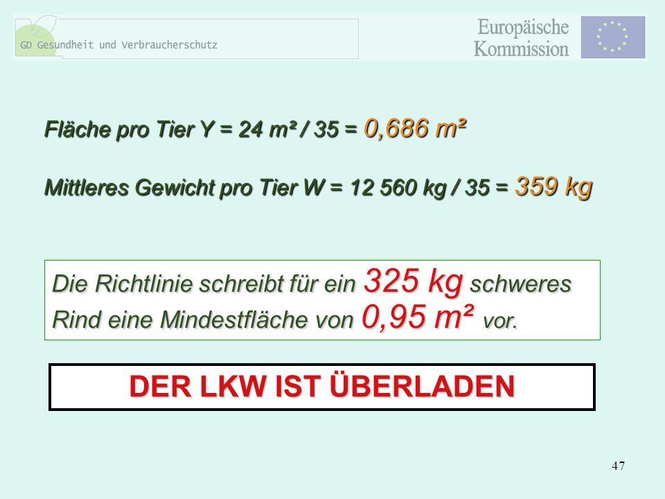 Fläche pro Tier Y = 24 m² / 35 = 0,686 m²