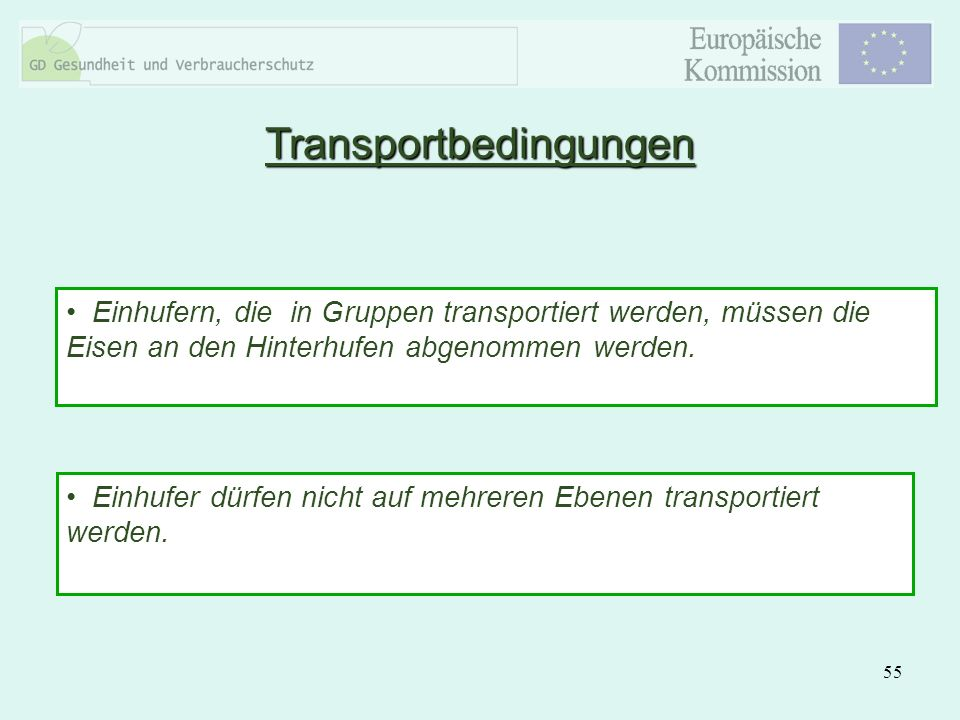 Transportbedingungen