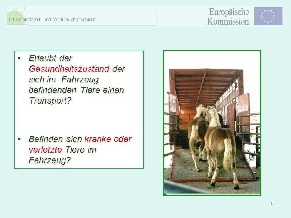 Erlaubt der Gesundheitszustand der sich im Fahrzeug befindenden Tiere einen Transport