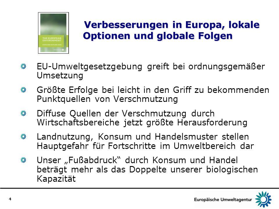 Verbesserungen in Europa, lokale Optionen und globale Folgen